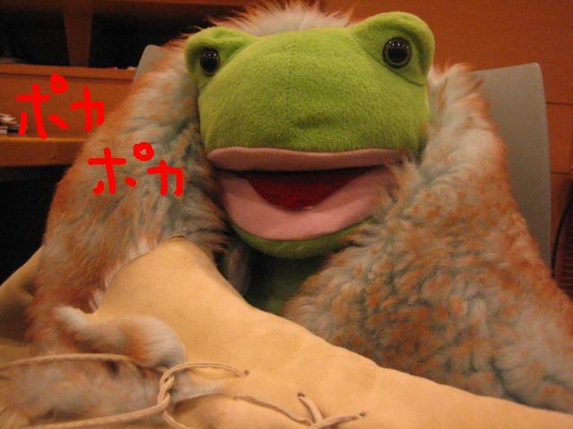 カエルくんの公約は・・・_c0064514_20451454.jpg