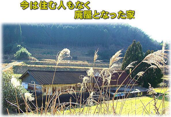 d0070316_20122212.jpg