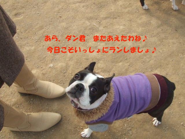 f0059334_964219.jpg