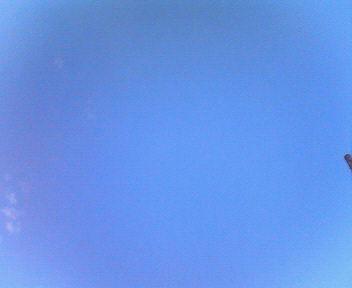 青空だね_e0114246_14344330.jpg