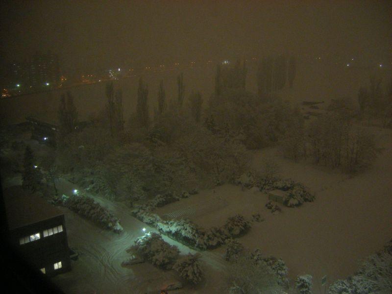 この冬一番の大雪_c0025115_055599.jpg