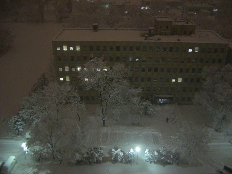 この冬一番の大雪_c0025115_0563842.jpg