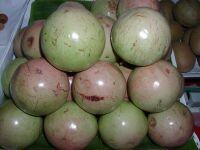 ***日本にはないベトナムの美味しい果物***^。^_e0046428_19363454.jpg