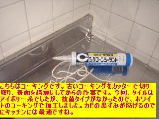 f0031037_1526263.jpg