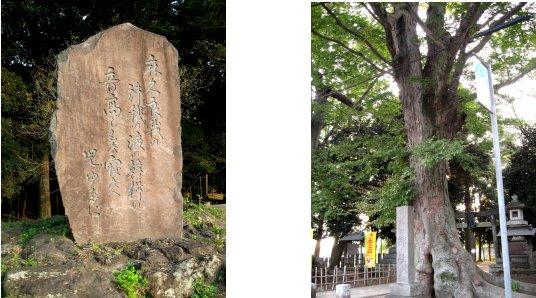 岩井・東海村・結城・古河編(15):古河(06.10)_c0051620_693492.jpg