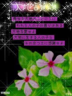 f0113150_20143917.jpg