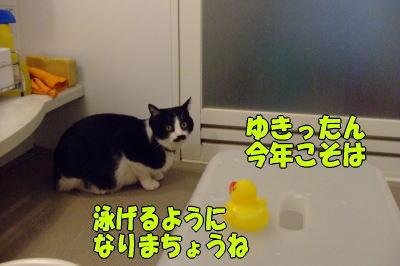 b0041182_022569.jpg