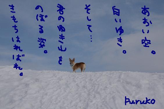 f0116384_14531679.jpg