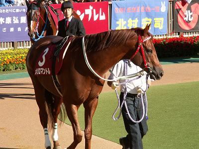 川崎記念(GI)は、ヴァーミリアン(牡5)が6馬身差の圧勝で初GI制覇_b0015386_23403623.jpg