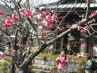 鎌倉散策_c0073015_22283520.jpg