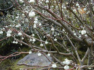 鎌倉散策_c0073015_2232338.jpg