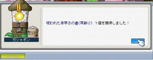 f0095185_154560.jpg