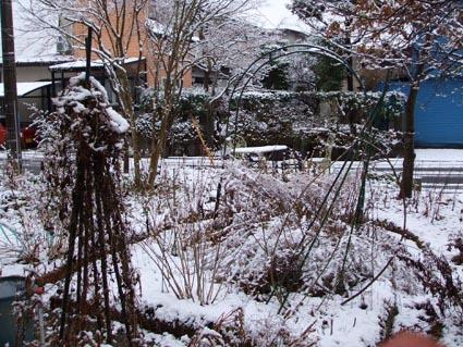 2月1日 雪_f0019498_19402686.jpg