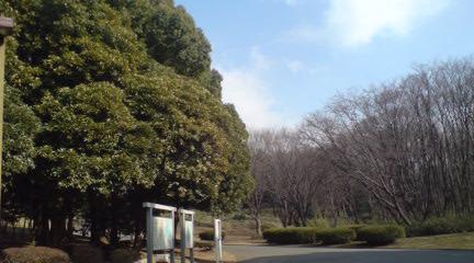 空_c0099133_0342259.jpg