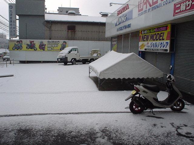ついに雪キター!ですやん!_f0056935_20481982.jpg