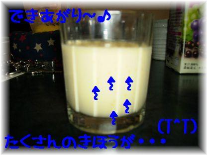 d0080336_12111484.jpg