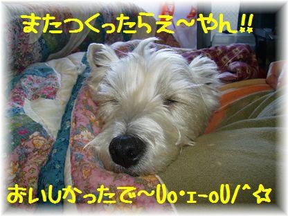 d0080336_12251461.jpg