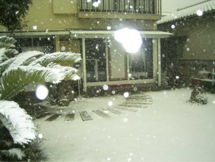 ♪雪は降る~ゥあなた(お客さん)は来ない~ィ↓_d0076864_10354764.jpg
