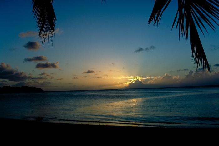 South island 2_a0034902_12472371.jpg