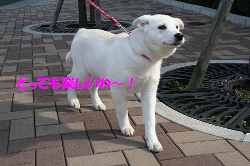 f0121712_702150.jpg
