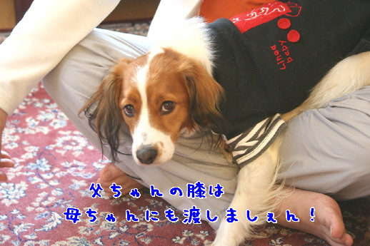 d0013149_040557.jpg