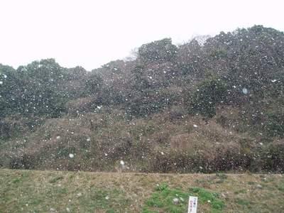 雪中散歩_a0077071_842635.jpg