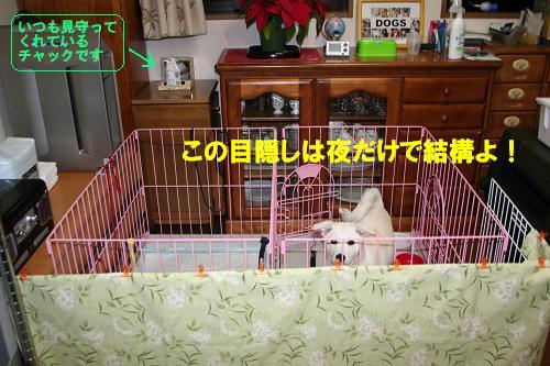 f0121712_8443581.jpg