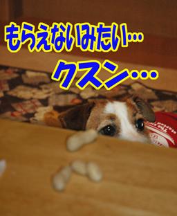 f0035044_11121420.jpg
