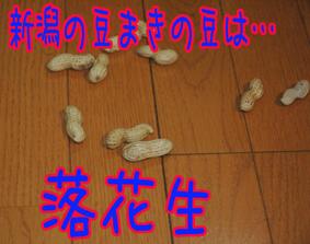 f0035044_113171.jpg