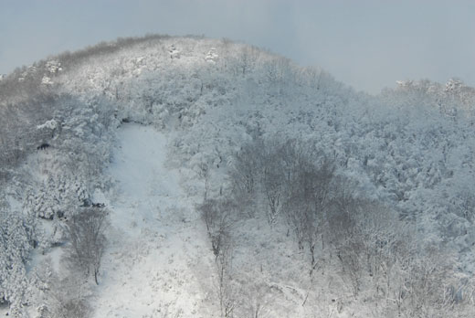 雪景色Ⅲ_c0093046_10495632.jpg
