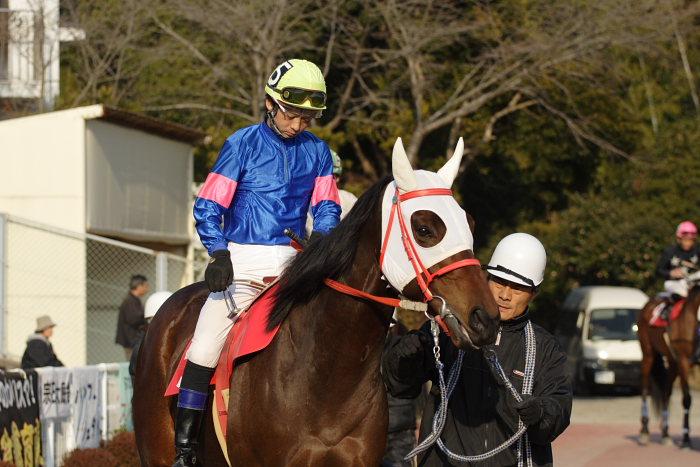 2007年2月4日(日) 高知競馬 10R アメジスト特別_a0077663_196050.jpg