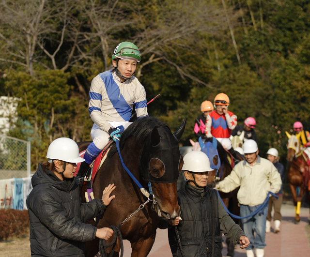 2007年2月4日(日) 高知競馬 10R アメジスト特別_a0077663_1961415.jpg