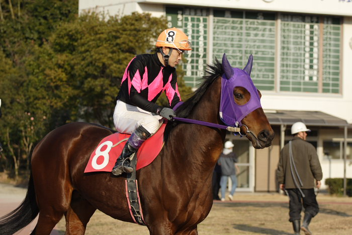 2007年2月4日(日) 高知競馬 10R アメジスト特別_a0077663_1962496.jpg
