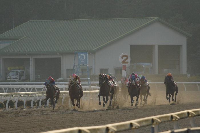 2007年2月4日(日) 高知競馬 10R アメジスト特別_a0077663_197517.jpg