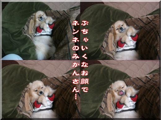 b0078073_22463075.jpg
