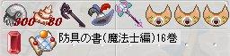 b0069074_916989.jpg