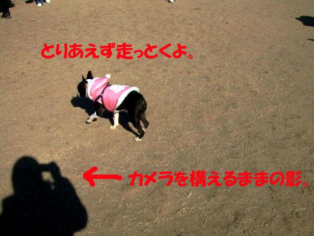 f0059334_9122739.jpg
