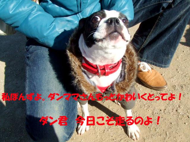 f0059334_9202698.jpg