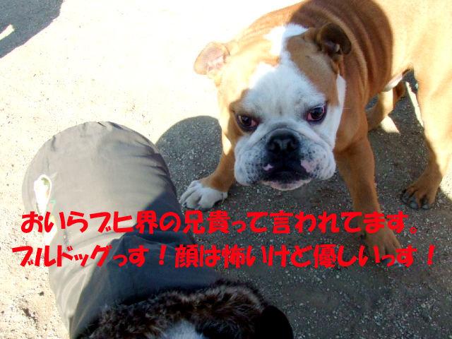 f0059334_9245223.jpg