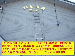 f0031037_163236.jpg