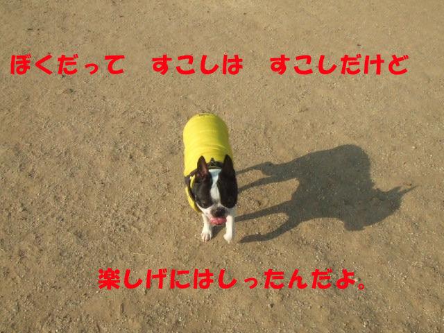 f0059334_8541151.jpg