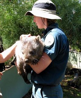 動物を保護する ボノロング 野生動物公園にて~_e0098241_10503281.jpg
