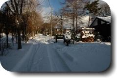 冬らしくなりました_f0090019_14314615.jpg