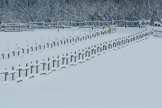 雪景色Ⅵ_c0093046_6551186.jpg