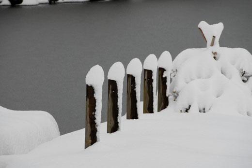 雪景色Ⅵ_c0093046_6552996.jpg