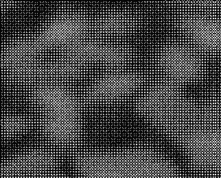 d0017381_563759.jpg