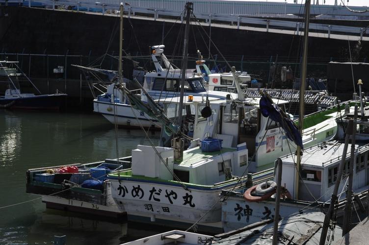 多摩川を越えて_f0042194_23292266.jpg