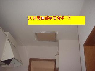 f0031037_1750874.jpg