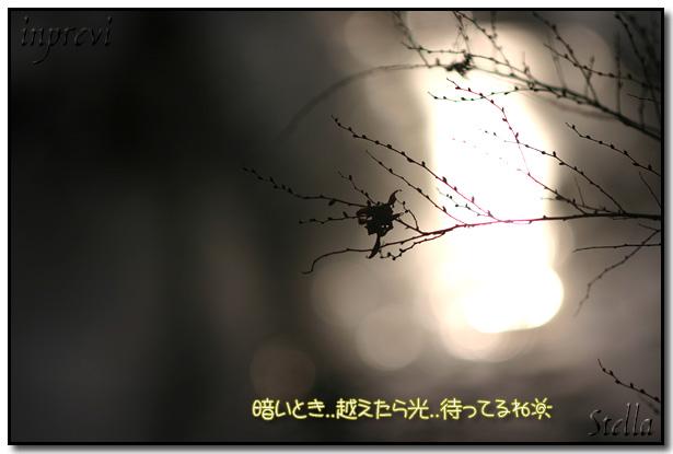 d0015026_18384022.jpg