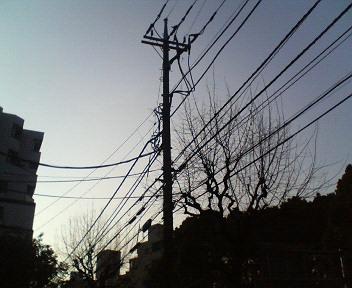 f0114231_81579.jpg